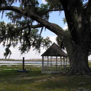 4-hour-airboat-tour